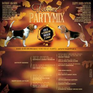 partymix9